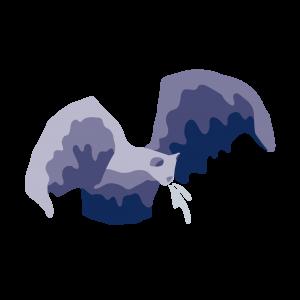 vleermuis bolsward